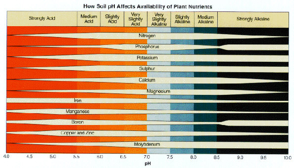SOIL pH The logarithmic scale measuring pH extends from zero to 14, with 7 being neutral. Soil with a pH of 6 is 10-times more acid than soil with a pH of 7, while soil with a pH of 5 is 100-times more acid than pH 7. Generally speaking, most plants grow best in a soil pH of 6.5 to 7.2