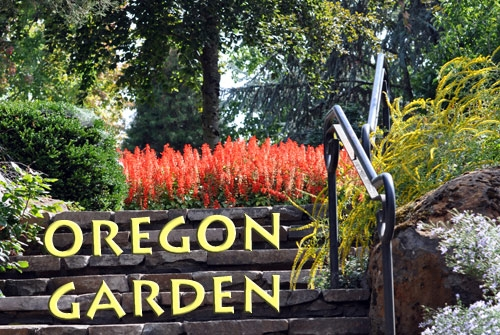 the-oregon-garden.jpg