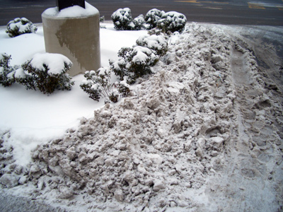 Salty slush and snow plowed into a shrub bed