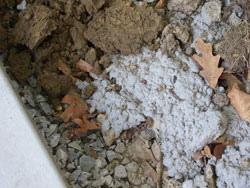 Remove excess concrete and construction debris from the driveway edges, being careful not to undermine the concrete slabs. -